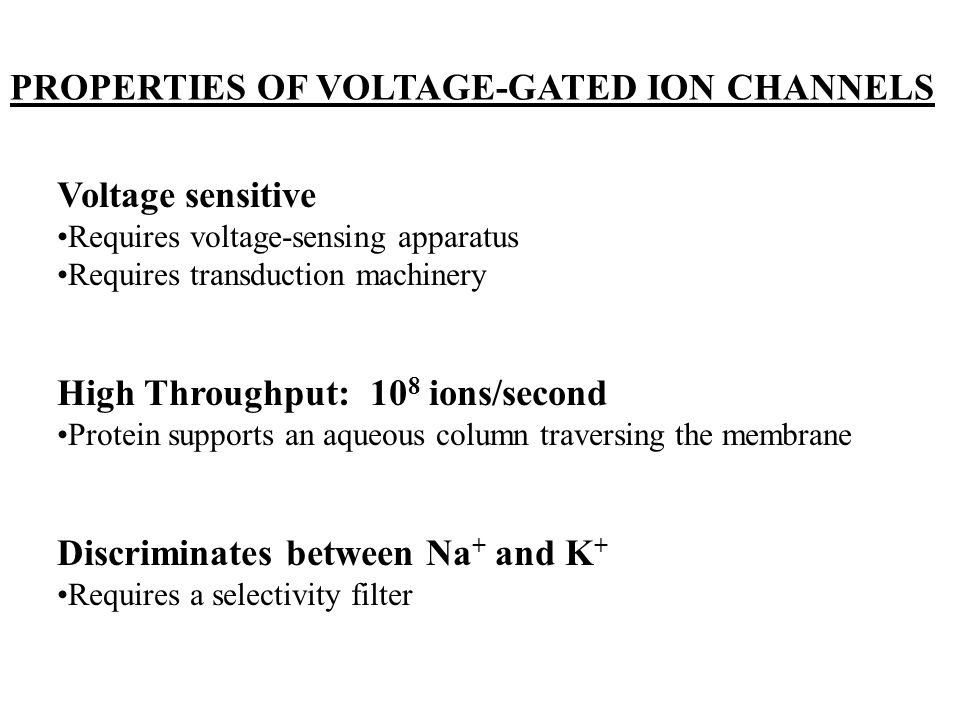 PROPERTIES OF VOLTAGE-GATED ION CHANNELS
