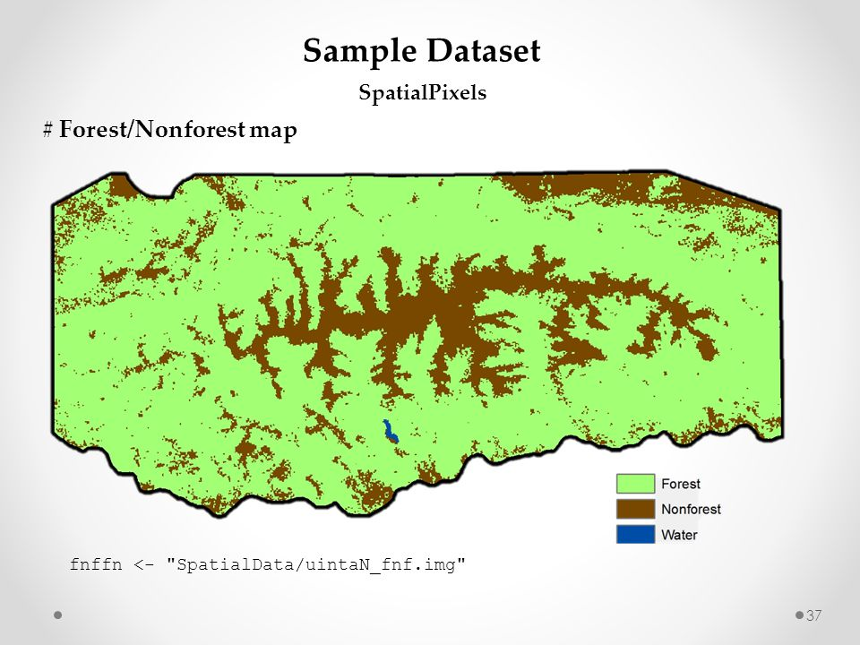Sample Dataset # Forest/Nonforest map SpatialPixels