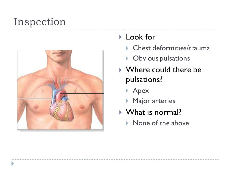 Inspection Look for Where could there be pulsations What is normal
