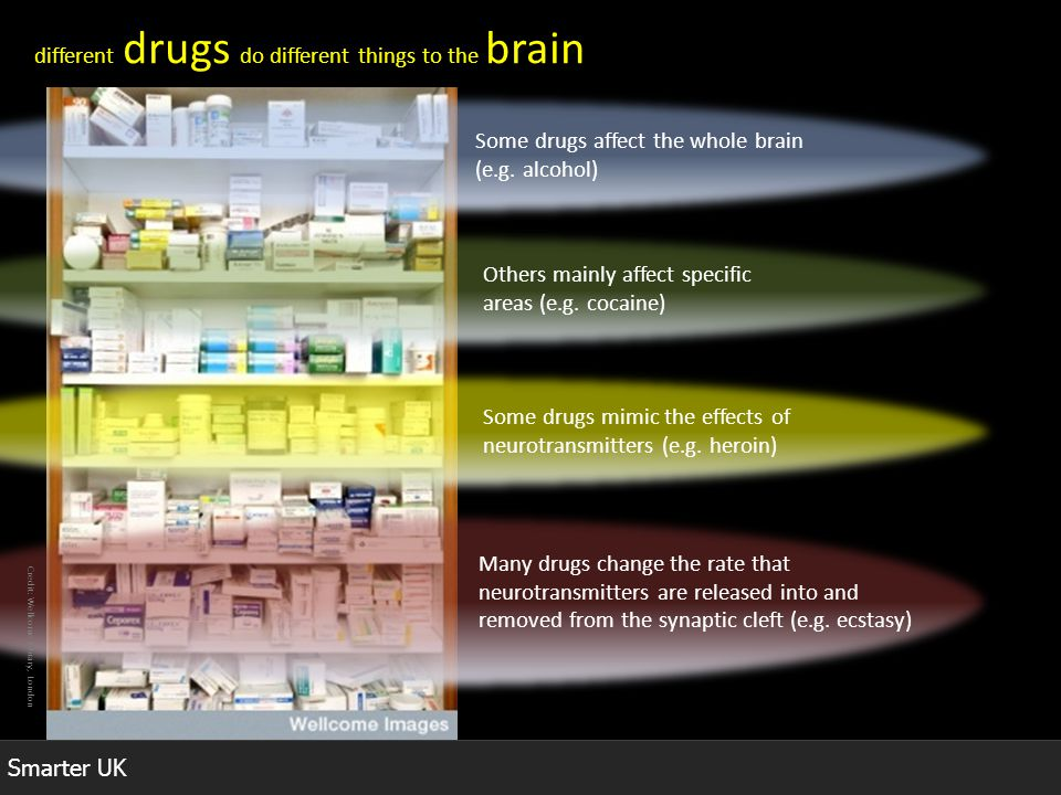 different drugs do different things to the brain
