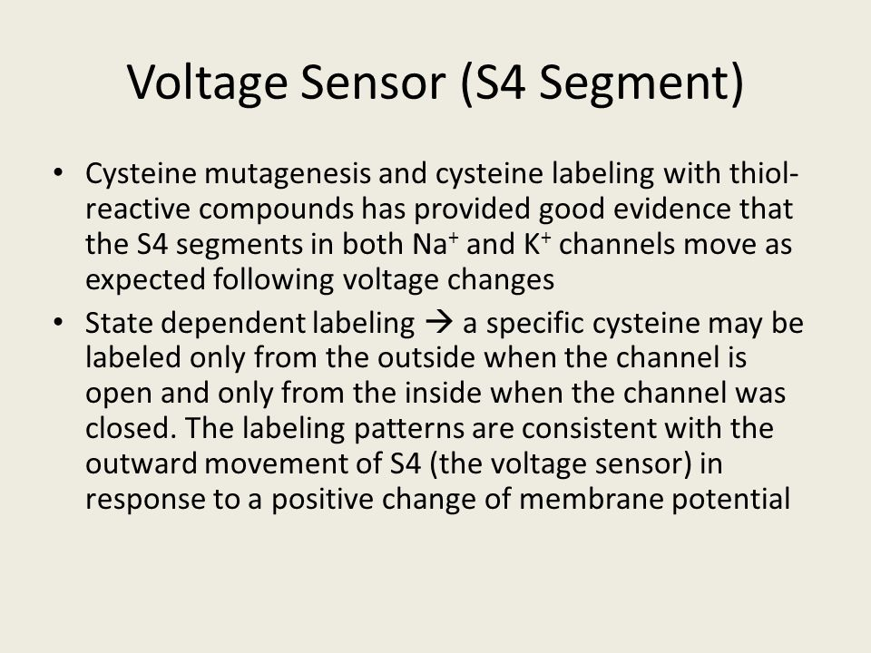 Voltage Sensor (S4 Segment)