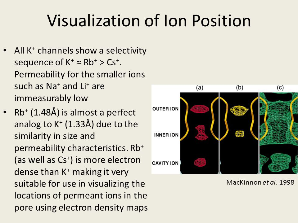 Visualization of Ion Position