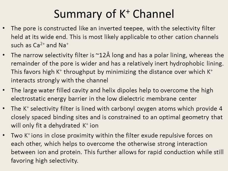 Summary of K+ Channel