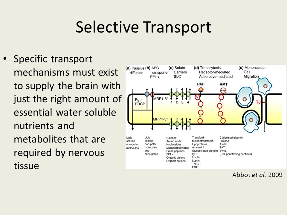 Selective Transport