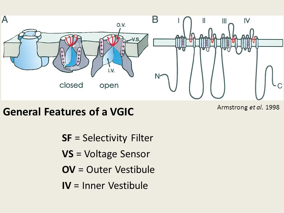 General Features of a VGIC