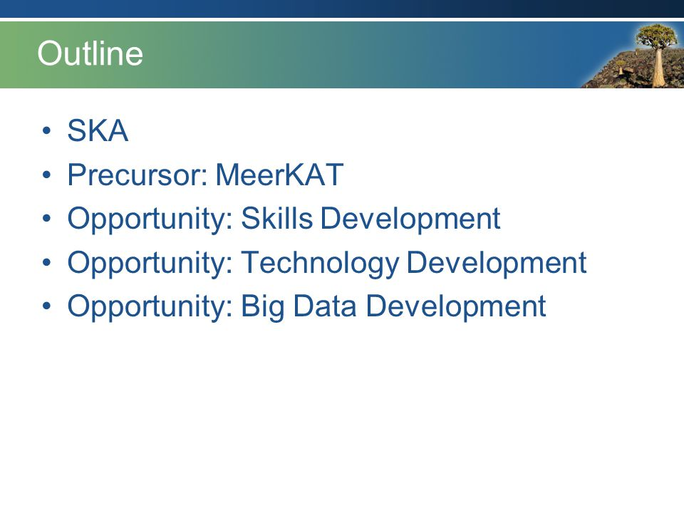 Outline SKA Precursor: MeerKAT Opportunity: Skills Development
