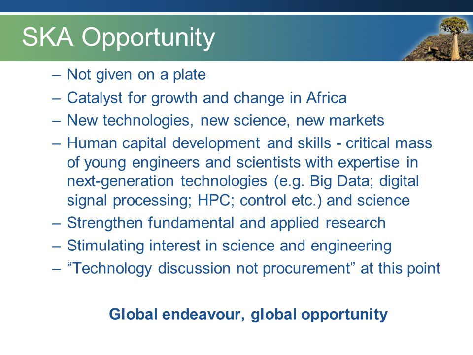 Global endeavour, global opportunity