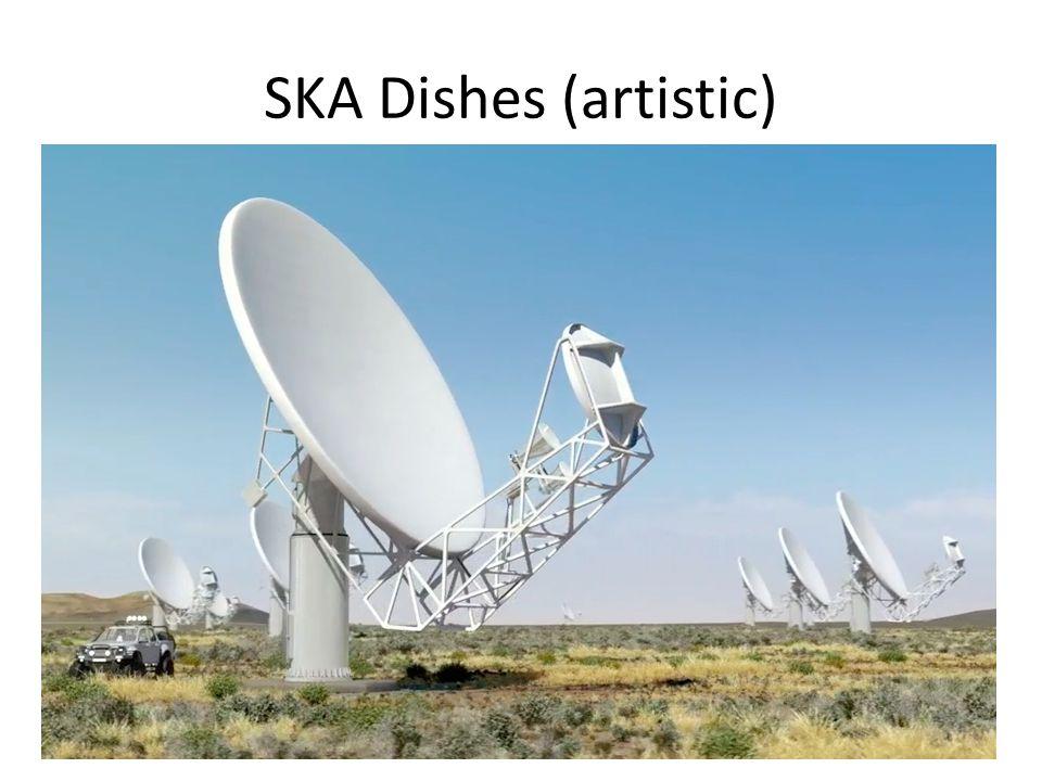 SKA Dishes (artistic)