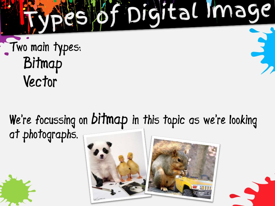 Types of Digital Image Bitmap Vector Two main types: