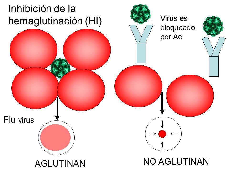 Inhibición de la hemaglutinación (HI)