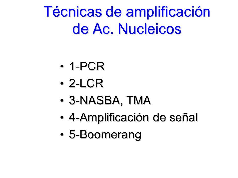 Técnicas de amplificación de Ac. Nucleicos