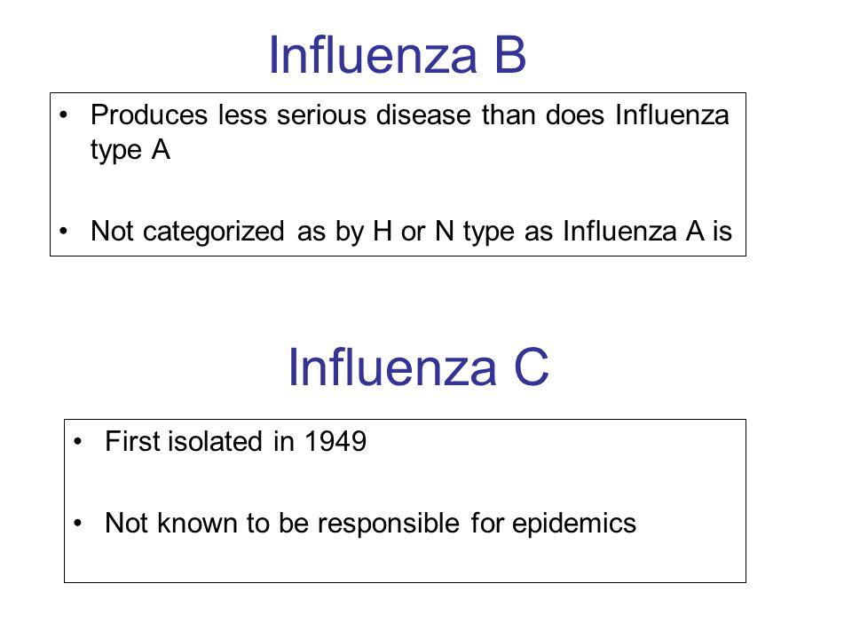 Influenza B Influenza C