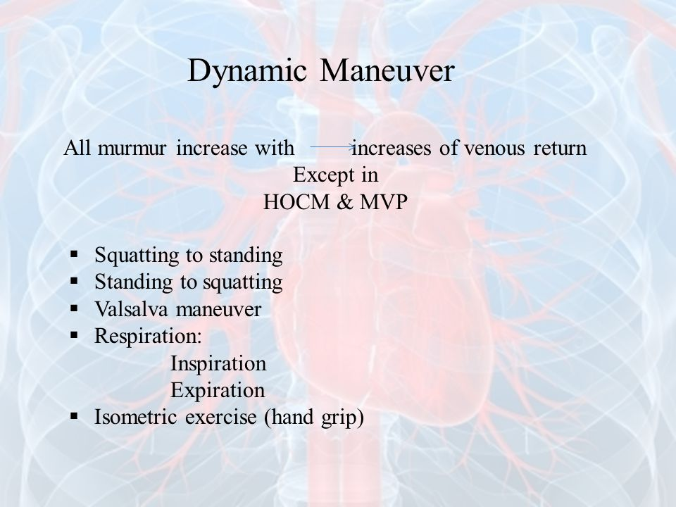 Dynamic Maneuver All murmur increase with increases of venous return