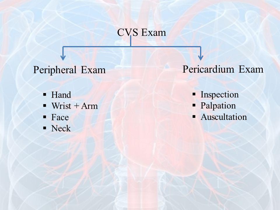 CVS Exam Peripheral Exam Pericardium Exam Hand Inspection Wrist + Arm