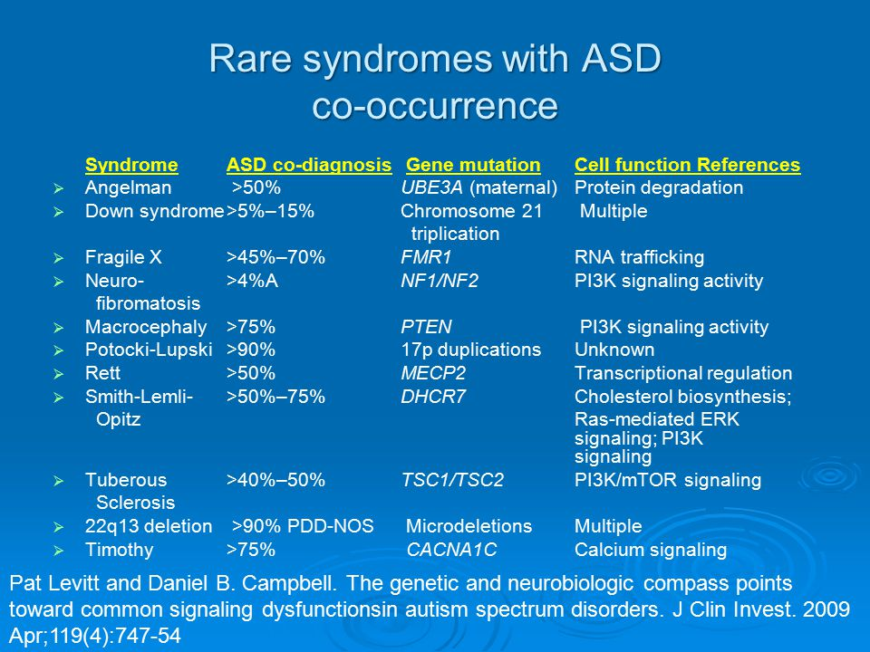 Rare syndromes with ASD co-occurrence