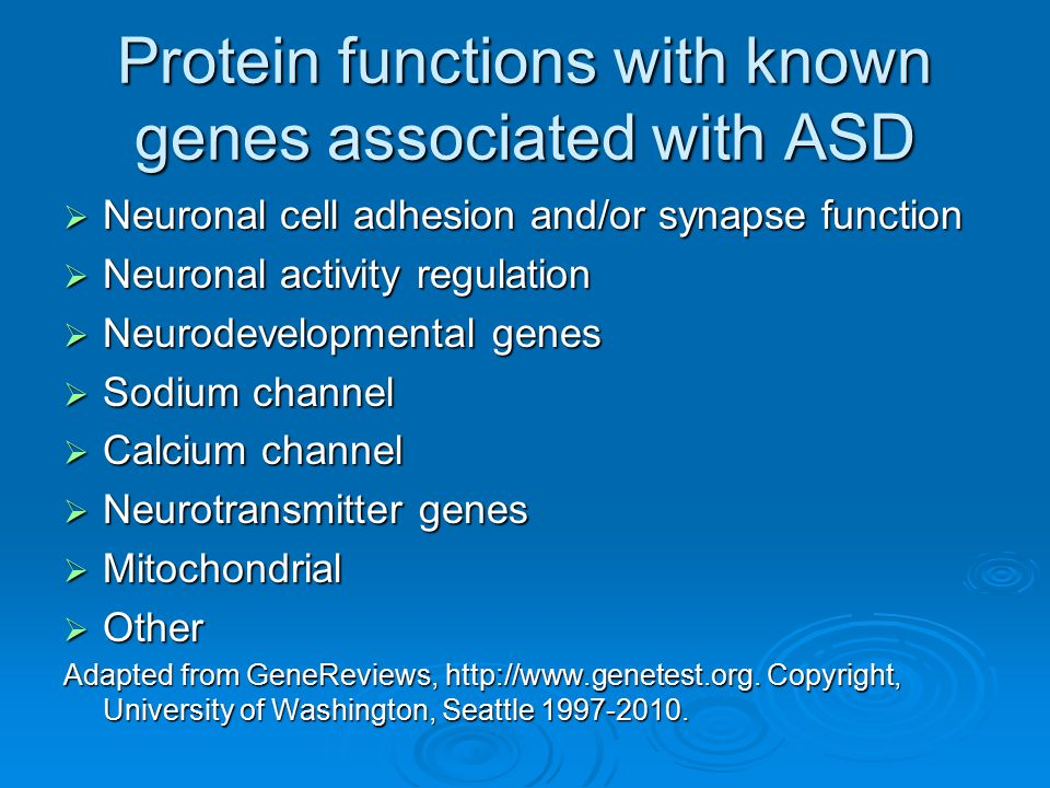 Protein functions with known genes associated with ASD