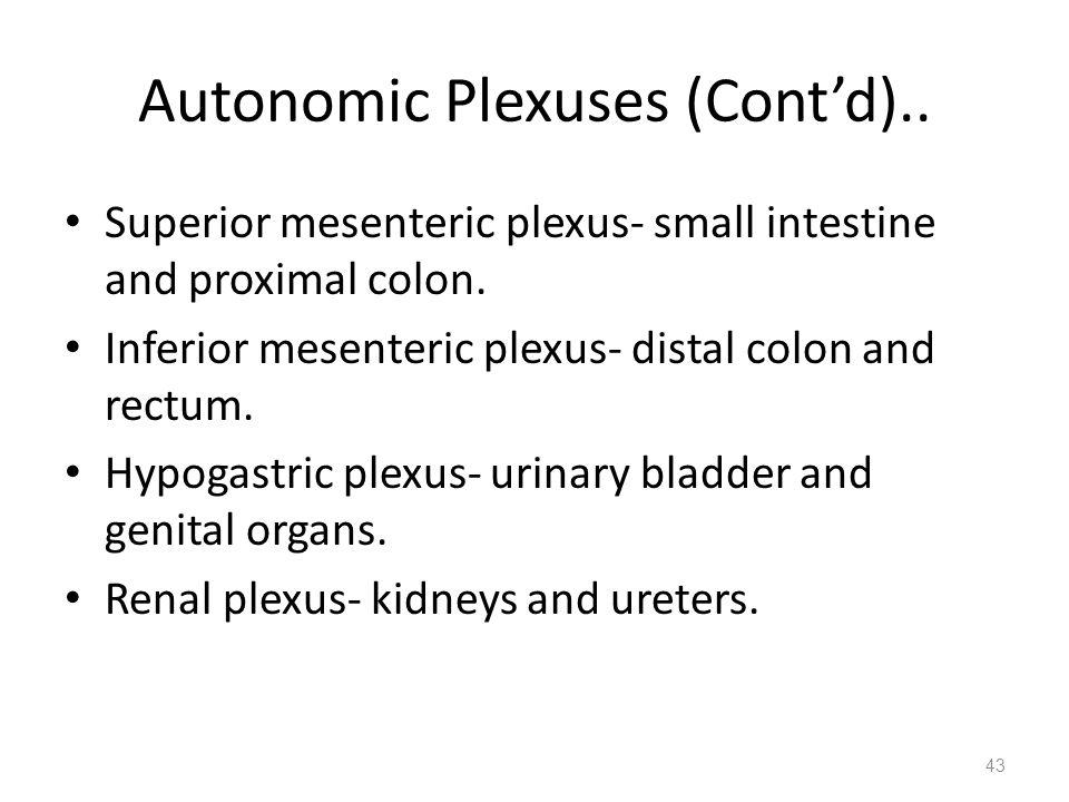 Autonomic Plexuses (Cont'd)..