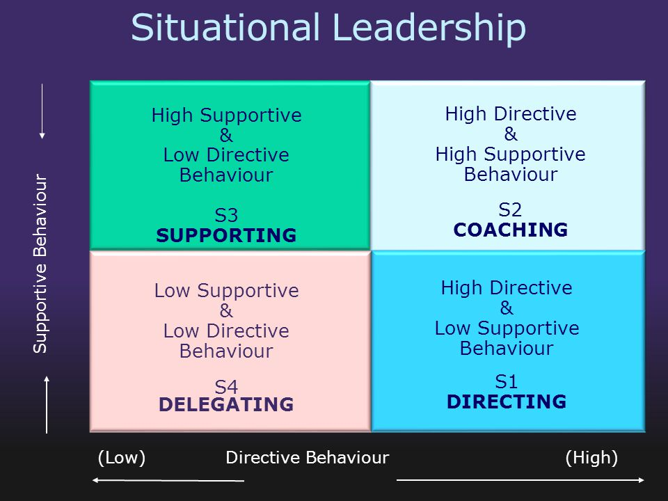 Supporting leadership style