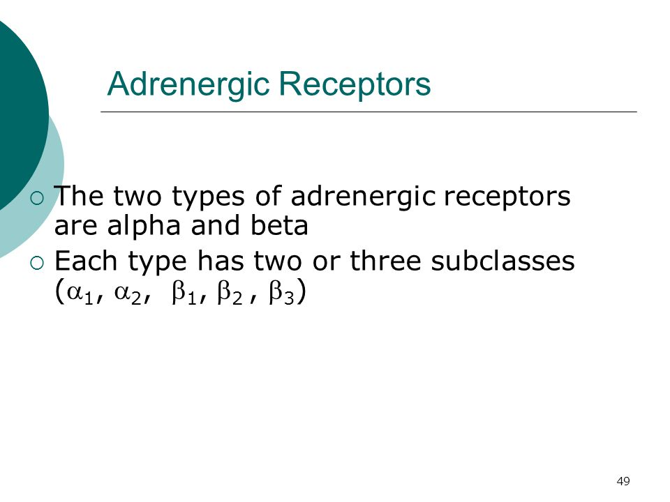 Adrenergic Receptors The two types of adrenergic receptors are alpha and beta.