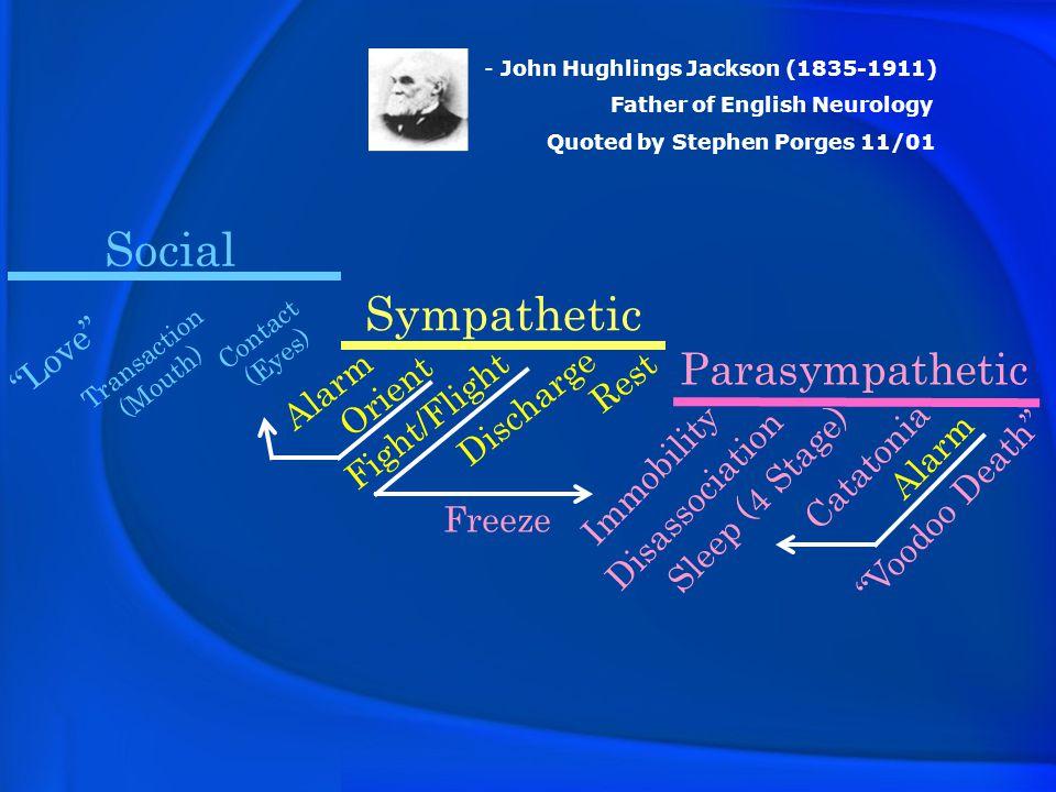 Social Sympathetic Parasympathetic Love Rest Alarm Orient Discharge