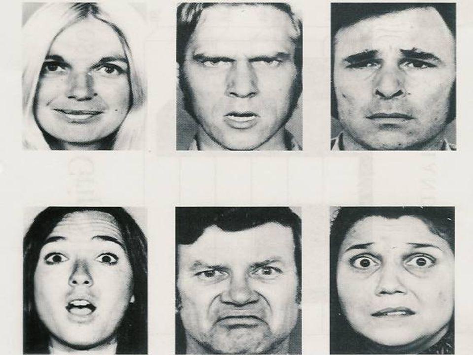 Ekman's Emotional Faces