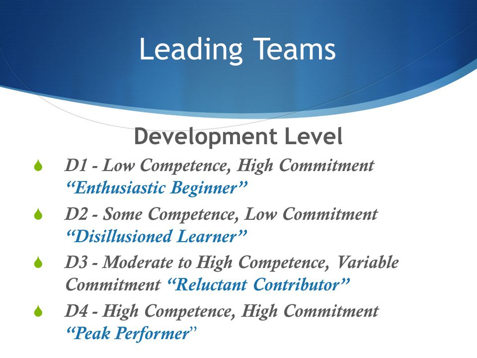 Leading Teams Development Level