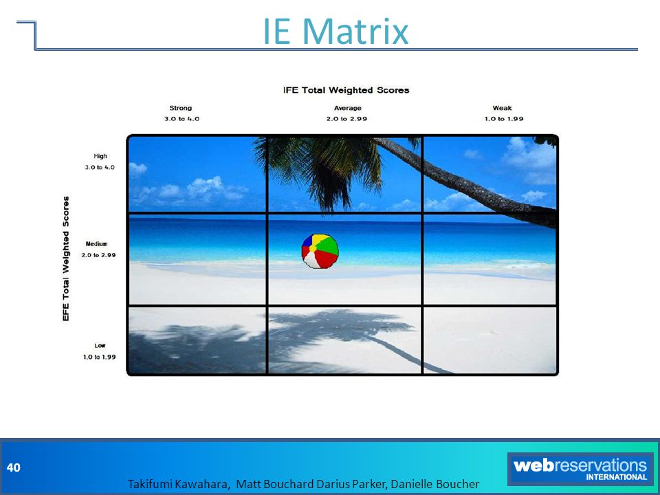IE Matrix