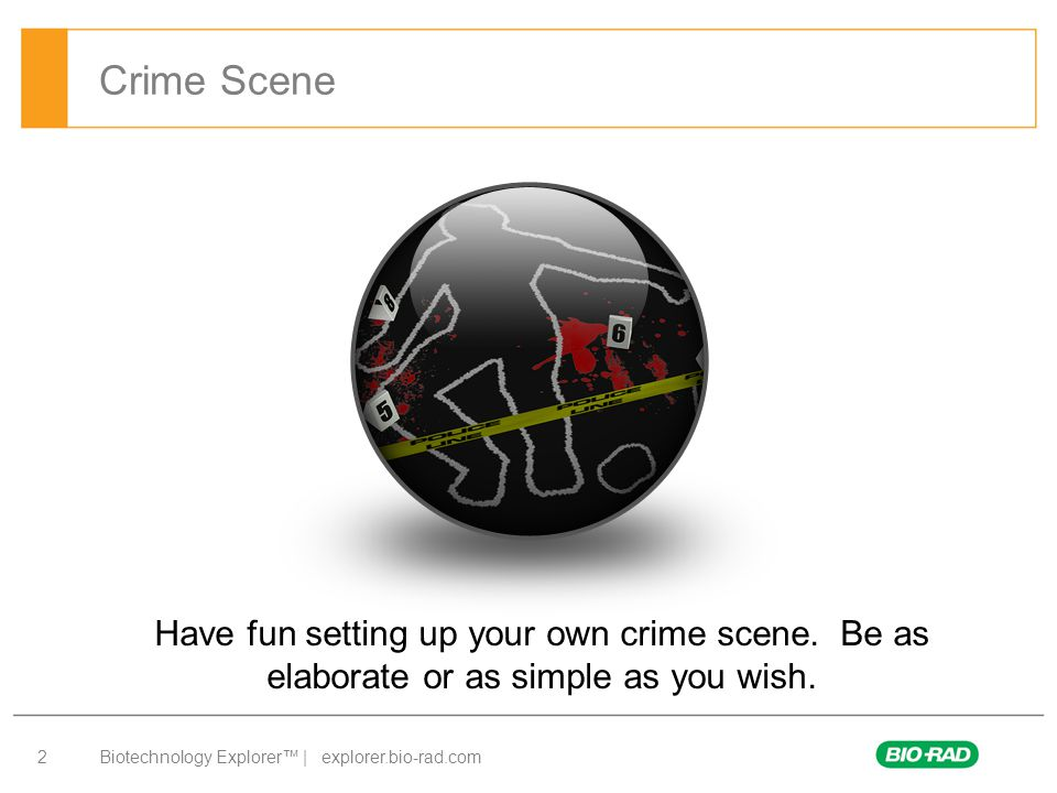 Crime Scene Have fun setting up your own crime scene. Be as elaborate or as simple as you wish.