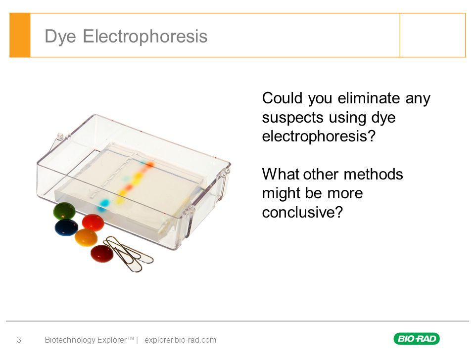 Dye Electrophoresis Could you eliminate any suspects using dye electrophoresis.
