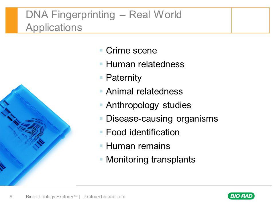 DNA Fingerprinting – Real World Applications