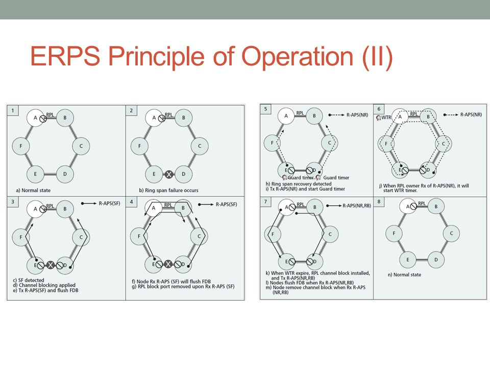 ERPS Principle of Operation (II)