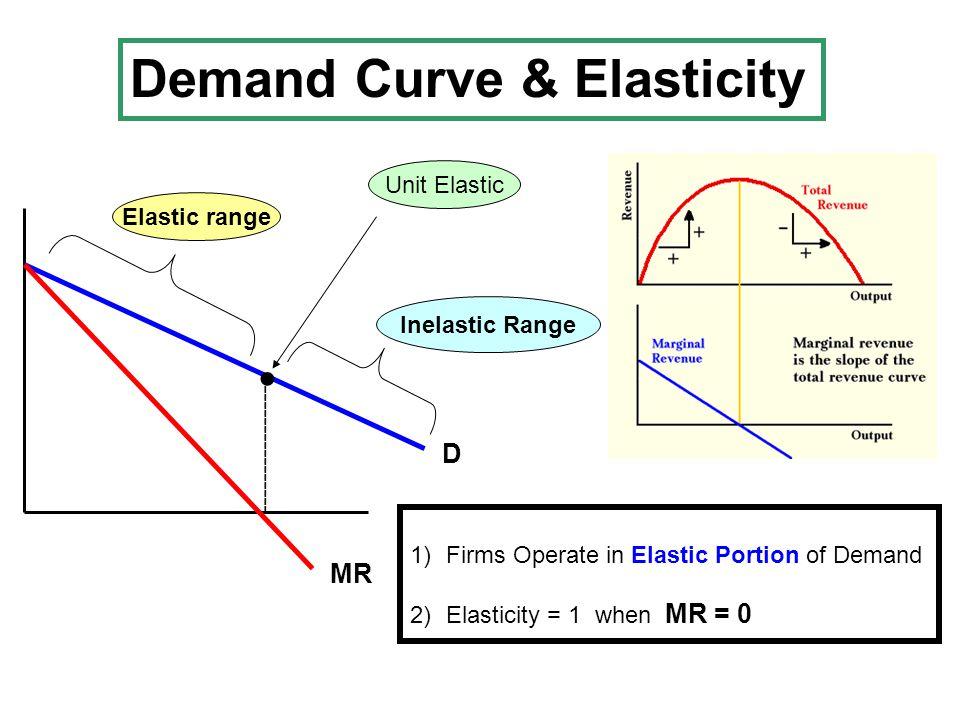 Demand Curve & Elasticity