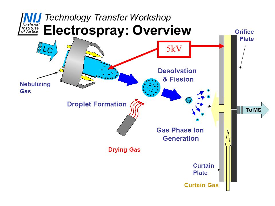 Electrospray: Overview