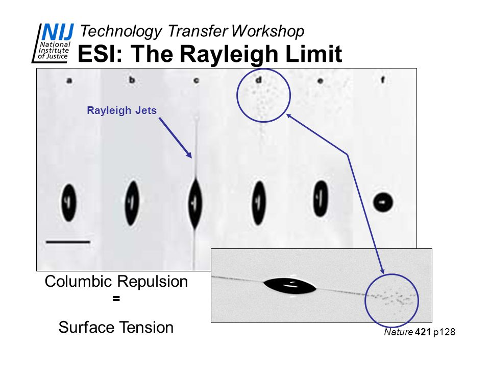 ESI: The Rayleigh Limit