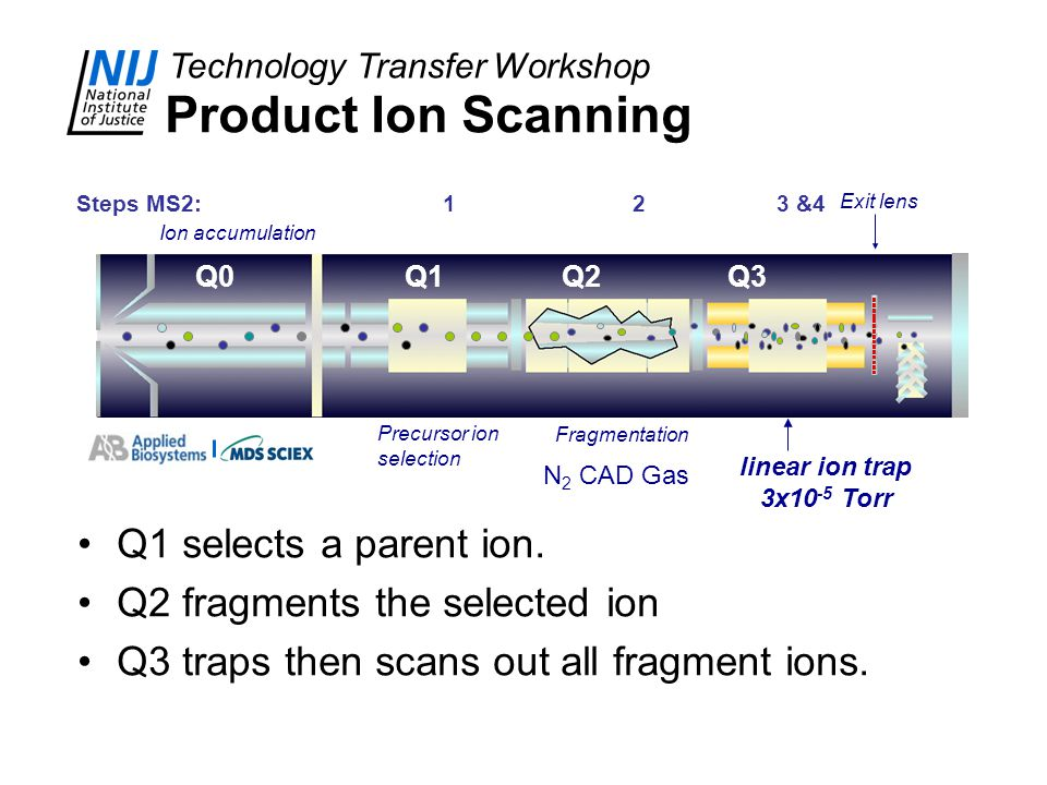 Product Ion Scanning Q1 selects a parent ion.