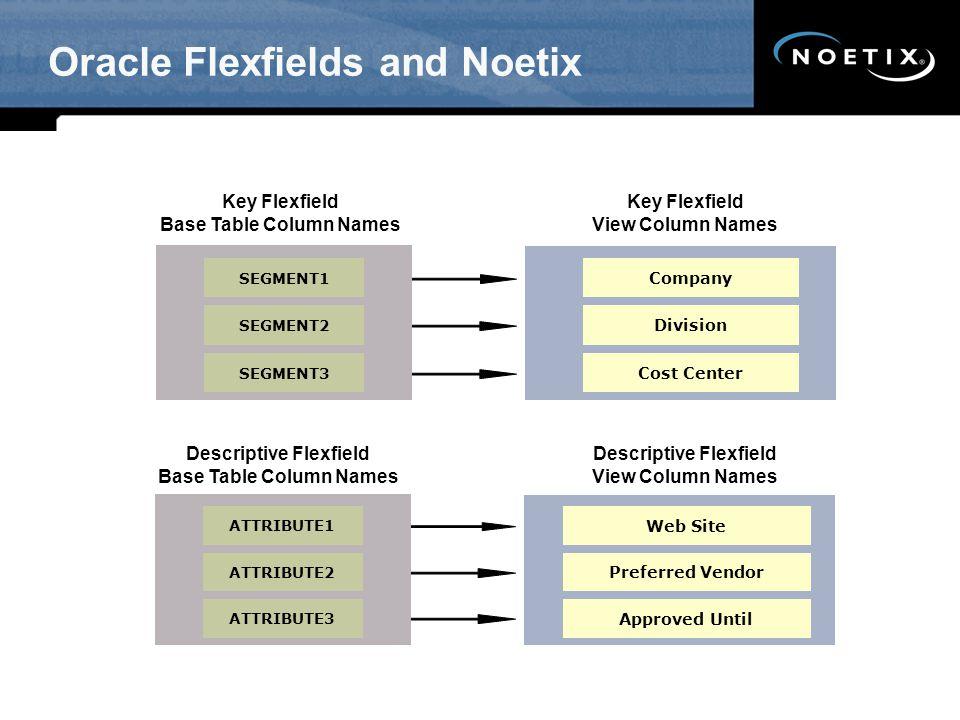 Oracle Flexfields and Noetix