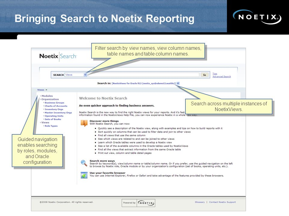 Bringing Search to Noetix Reporting
