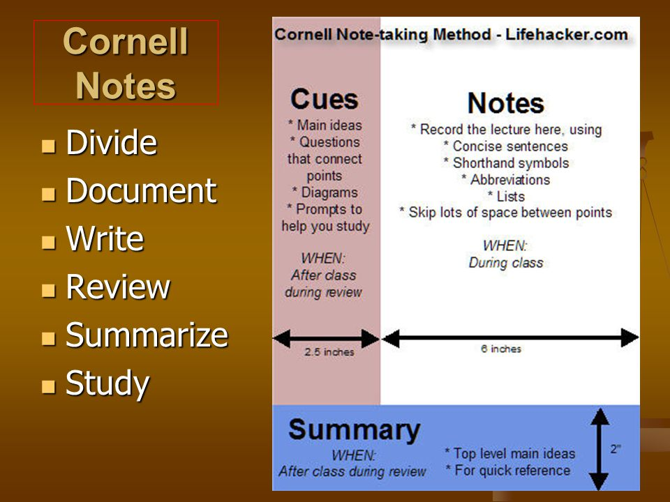 Cornell Notes Divide Document Write Review Summarize Study