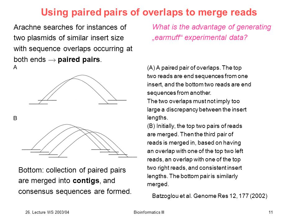 Using paired pairs of overlaps to merge reads