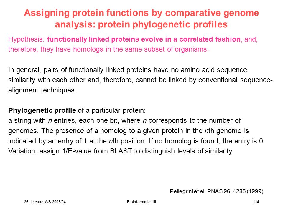 Assigning protein functions by comparative genome analysis: protein phylogenetic profiles