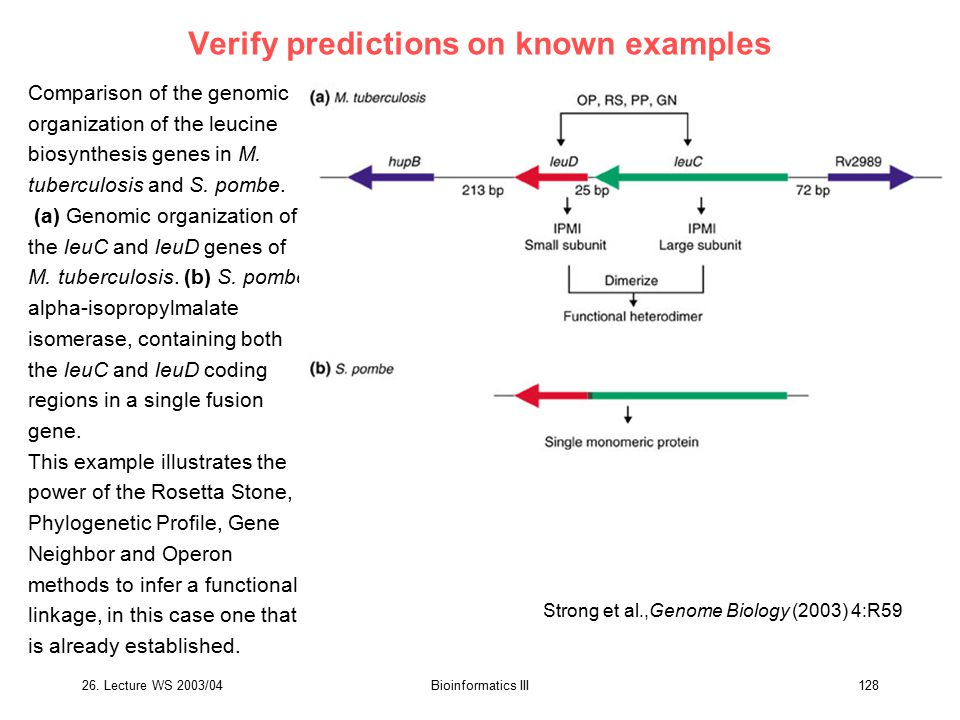 Verify predictions on known examples