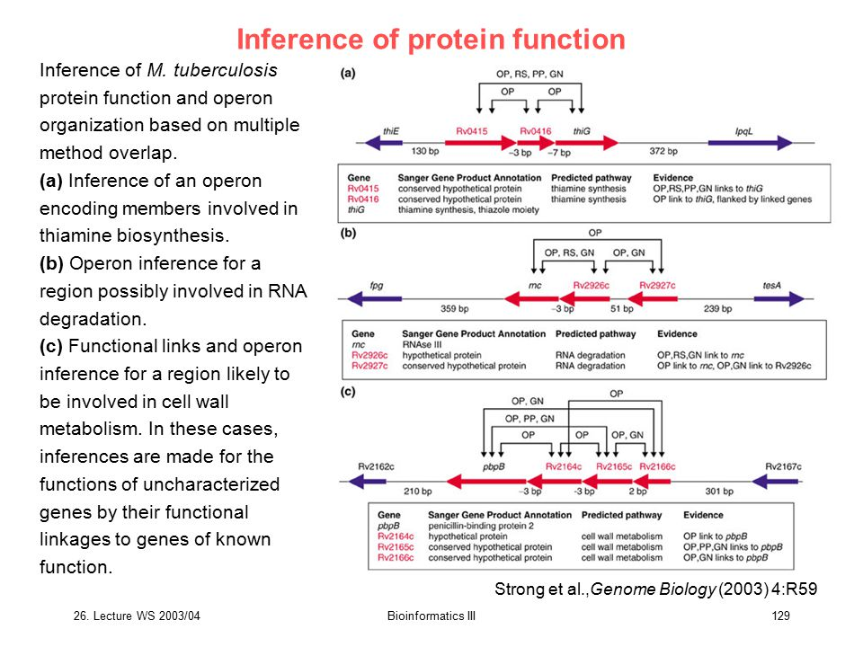 Inference of protein function