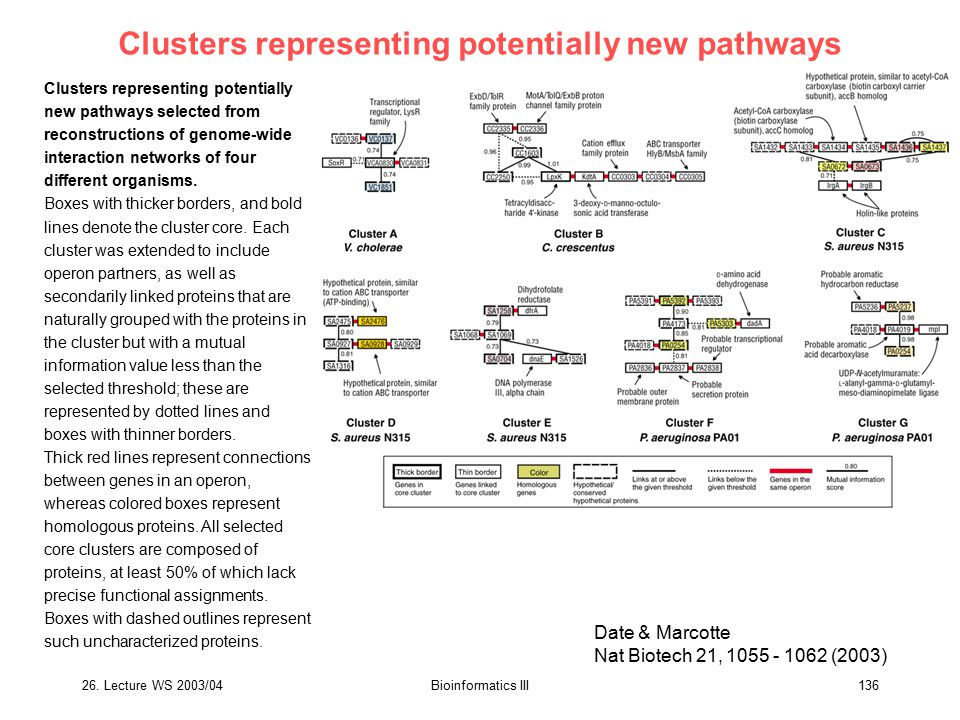 Clusters representing potentially new pathways
