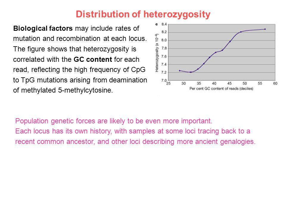 Distribution of heterozygosity