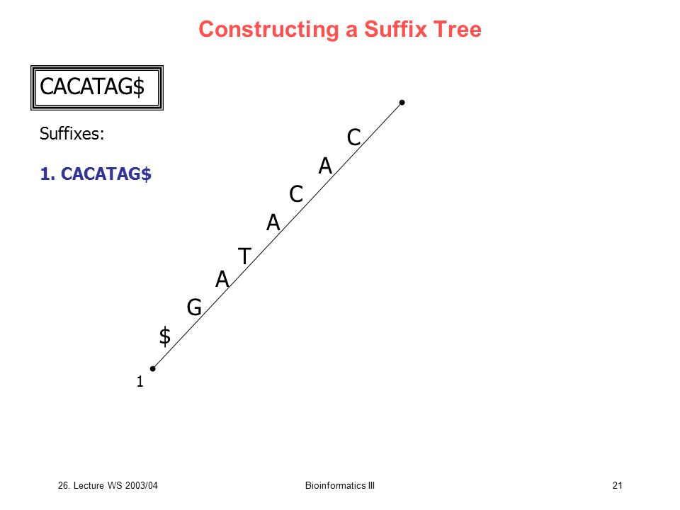 Constructing a Suffix Tree
