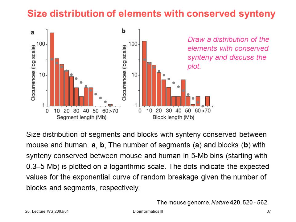 Size distribution of elements with conserved synteny