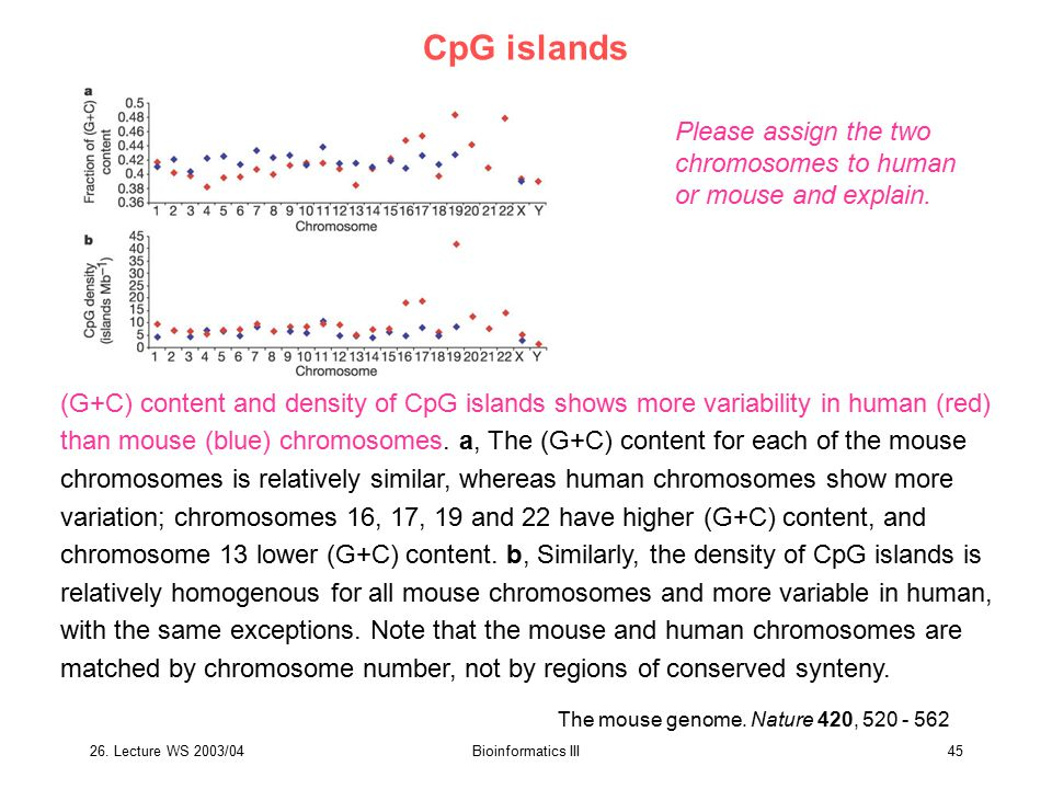 CpG islands Please assign the two chromosomes to human