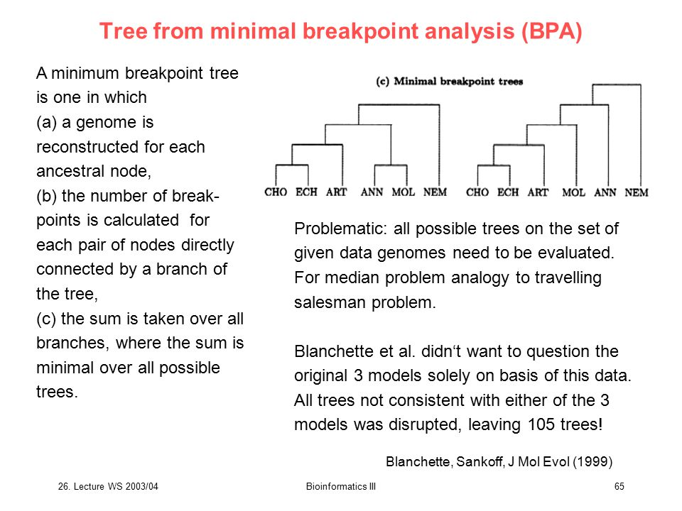Tree from minimal breakpoint analysis (BPA)