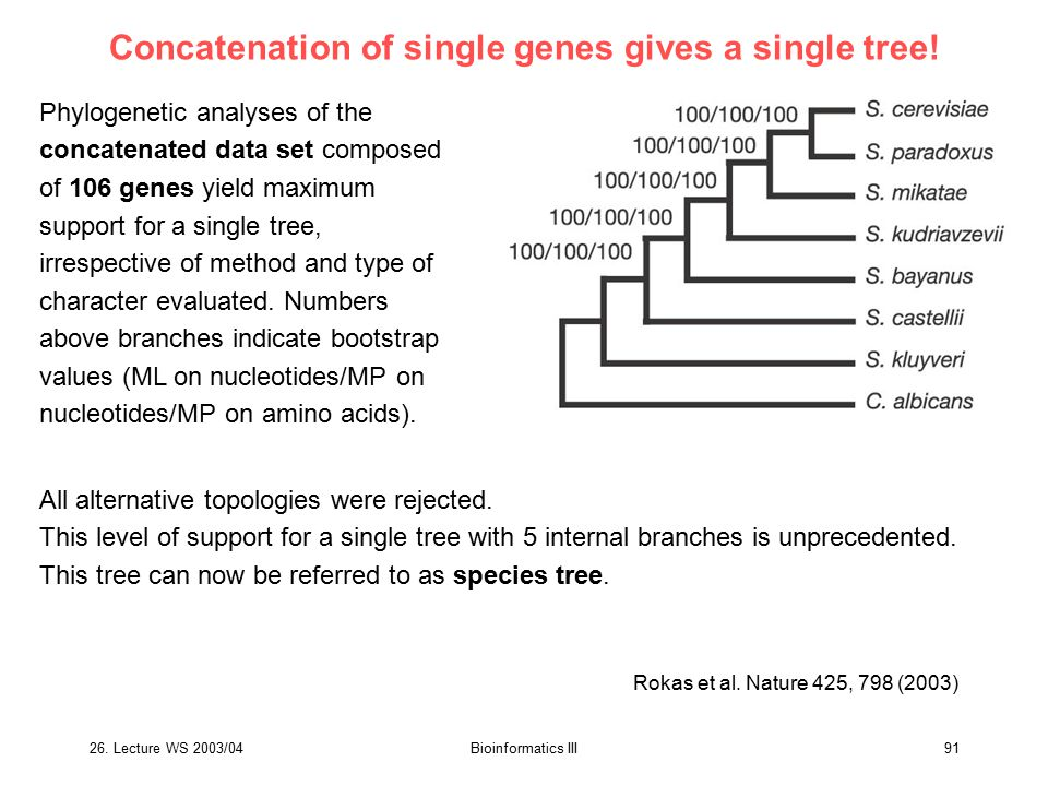 Concatenation of single genes gives a single tree!