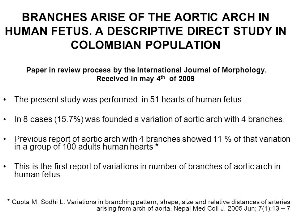 BRANCHES ARISE OF THE AORTIC ARCH IN HUMAN FETUS